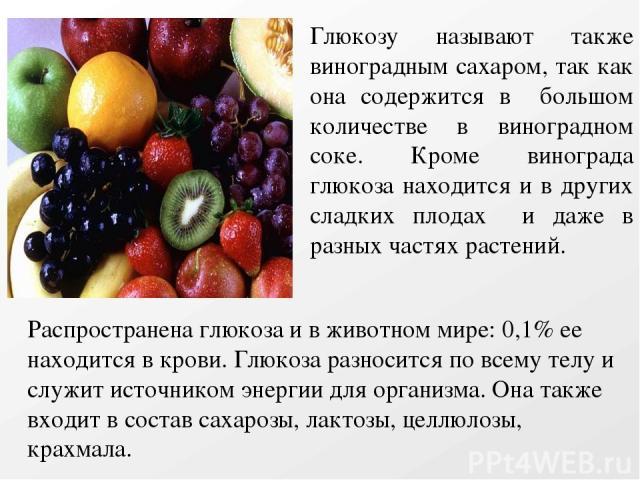 Глюкозу называют также виноградным сахаром, так как она содержится в большом количестве в виноградном соке. Кроме винограда глюкоза находится и в других сладких плодах и даже в разных частях растений. Распространена глюкоза и в животном мире: 0,1% е…