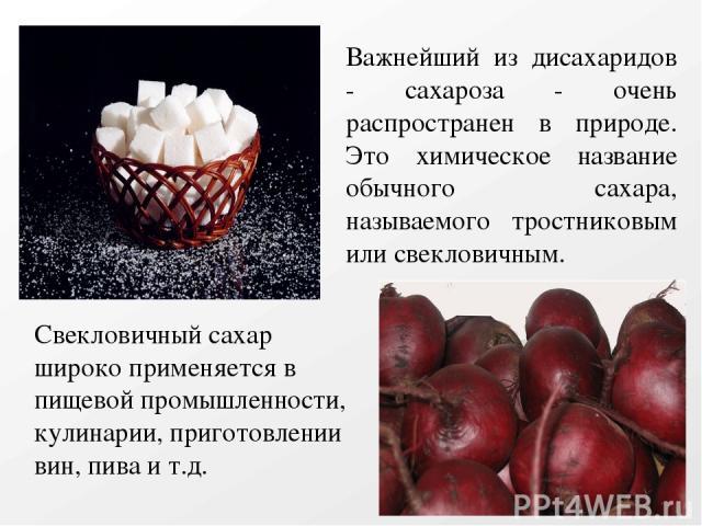 Важнейший из дисахаридов - сахароза - очень распространен в природе. Это химическое название обычного сахара, называемого тростниковым или свекловичным. Свекловичный сахар широко применяется в пищевой промышленности, кулинарии, приготовлении вин, пи…