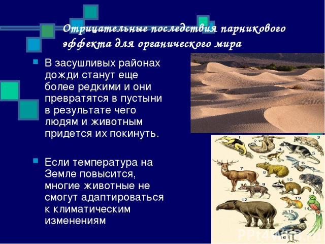 Отрицательные последствия парникового эффекта для органического мира В засушливых районах дожди станут еще более редкими и они превратятся в пустыни в результате чего людям и животным придется их покинуть. Если температура на Земле повысится, многие…