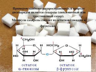 Примером наиболее распространенных в природе дисахаридов является сахароза (свек