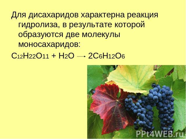 Для дисахаридов характерна реакция гидролиза, в результате которой образуются две молекулы моносахаридов: C12H22O11 + H2O 2C6H12O6
