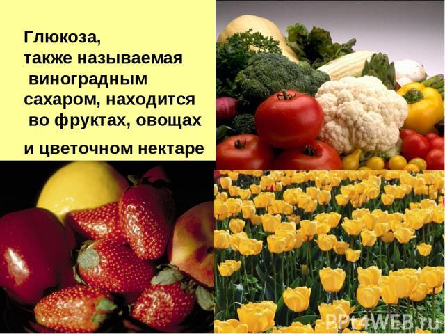 Глюкоза, также называемая виноградным сахаром, находится во фруктах, овощах и цветочном нектаре