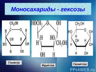 Глюкоза Фруктоза Галактоза Моносахариды - гексозы