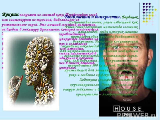 Кокаин получают из листьев коки (Erythroxylum coca) или синтезируют из экгонина, выделяемого из растительного сырья. Это мощный местный анестетик, он входит в микстуру Бромптона, которая используется для смягчения жестоких болей, сопровождающих посл…