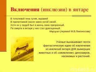 Включения (инклюзии) в янтаре В тополевой тени гуляя, муравей В прилипчивой смол