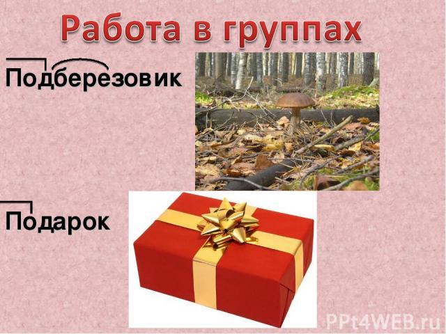 Подберезовик Подарок