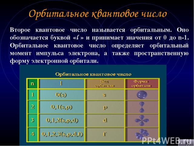 Орбитальное квантовое число Второе квантовое число называется орбитальным. Оно обозначается буквой «l » и принимает значения от 0 до n-1. Орбитальное квантовое число определяет орбитальный момент импульса электрона, а также пространственную форму эл…