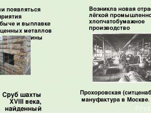 Сруб шахты XVIII века, найденный золотодобытчиками в Алтайском крае Начали появл
