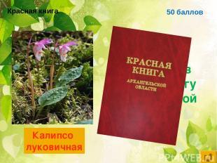 50 баллов Цветковое растение, занесённое в красную книгу Архангельской области К