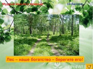 Мудрые мысли о природе 10 баллов Лес – наше богатство – … Лес – наше богатство –