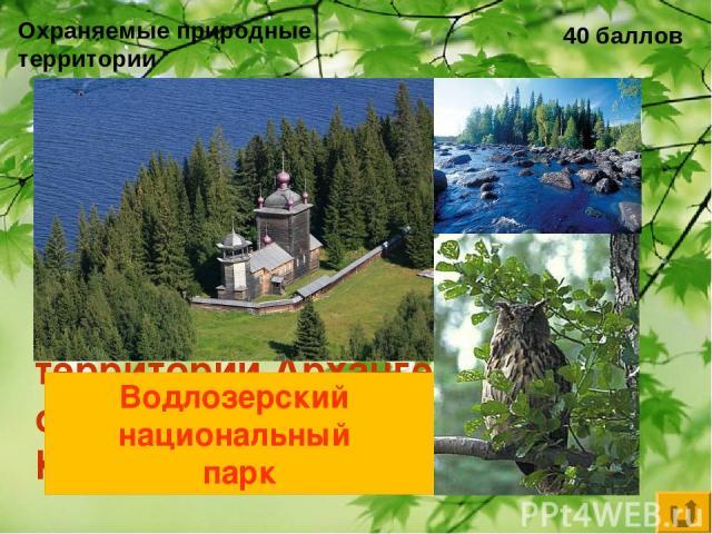 Охраняемые природные территории 40 баллов Национальный парк России, расположенный на территории Архангельской области и Республики Карелия… Водлозерский национальный парк