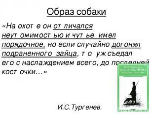 Образ собаки «На охоте он отличался неутомимостью и чутье имел порядочное, но ес