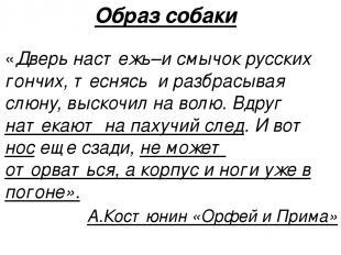 Образ собаки «Дверь настежь–и смычок русских гончих, теснясь и разбрасывая слюну