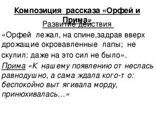 Композиция рассказа «Орфей и Прима» Развитие действия «Орфей лежал, на спине,зад