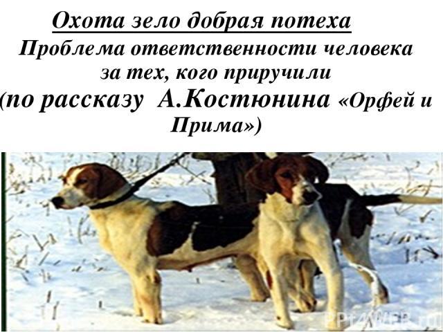 Проблема ответственности человека за тех, кого приручили (по рассказу А.Костюнина «Орфей и Прима») Охота зело добрая потеха