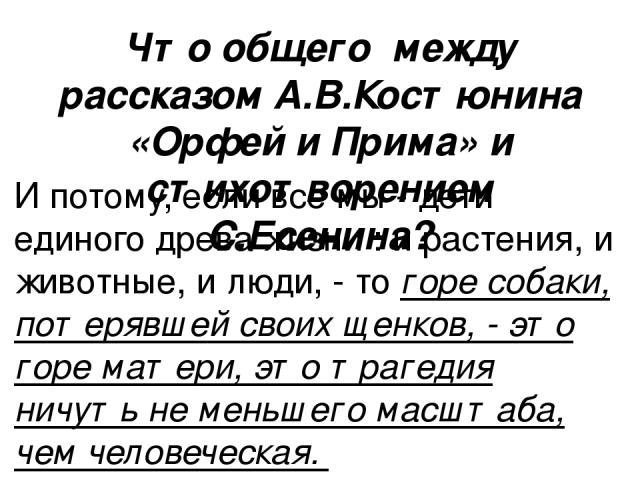 Что общего между рассказом А.В.Костюнина «Орфей и Прима» и стихотворением С.Есенина? И потому, если все мы - дети единого древа жизни : и растения, и животные, и люди, - то горе собаки, потерявшей своих щенков, - это горе матери, это трагедия ничуть…