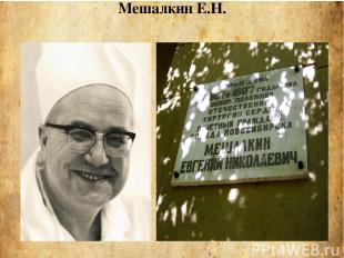 Мешалкин Е.Н.