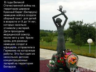 * В годы Великой Отечественной войны на территории деревни Красный Берег (Белару
