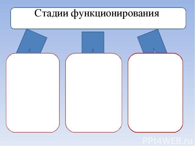 Стадии функционирования Латентная стадия. На этой стадии код вируса находится в системе, но никаких действий не предпринимает. Для пользователя не заметен. Может быть вычислен сканированием файловой системы и самих файлов. Инкубационная стадия . Для…