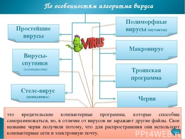 Виды вирусов по степени воздействия По особенностям алгоритма вируса Полиморфные вирусы (мутанты) Макровирус Троянская программа Простейшие вирусы Вирусы-спутники (компаньоны) Стелс-вирус (невидимка) Черви вирусы, которые при распространении своих …
