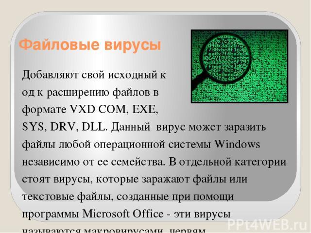 Файловые вирусы Добавляют свой исходный к од к расширению файлов в формате VXD COM, EXE, SYS, DRV,DLL. Данныйвирус может заразить файлы любой операционной системы Windows независимо от ее семейства. В отдельной категории стоят вирусы, которые зар…