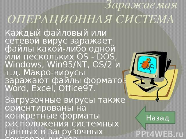 Среди антивирусных программных продуктов можно отметить, прежде всего, пакеты 1.Norton Antivirus (Symantec), 2.Vims Scan (McAfee), 3.Dr.Solomon AV Toolkit (S&S IntL), 4.AntiVirus (IBM), 5.InocuLAN (Computer Associates) 6.Лаборатория Касперского