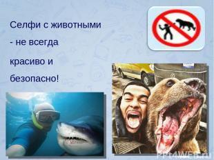 Селфи с животными - не всегда красиво и безопасно!