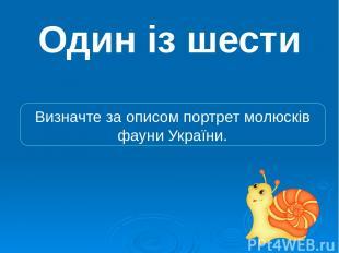 Один із шести Визначте за описом портрет молюсків фауни України.