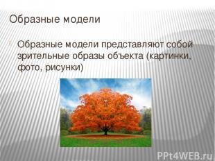 Образные модели Образные модели представляют собой зрительные образы объекта (ка