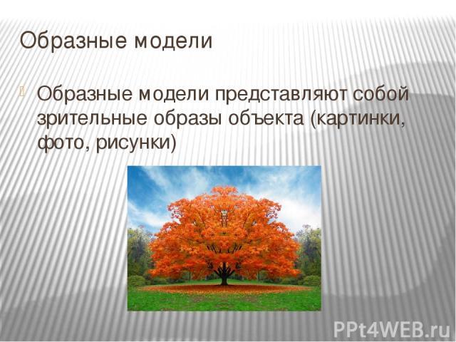 Образные модели Образные модели представляют собой зрительные образы объекта (картинки, фото, рисунки)