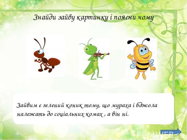Знайди зайву картинку і поясни чому Зайвим є зелений коник тому, що мураха і бджола належать до соціальних комах , а він ні..