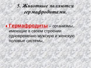 5. Животные являются гермафродитами. ♦ Гермафродиты – организмы, имеющие в своем