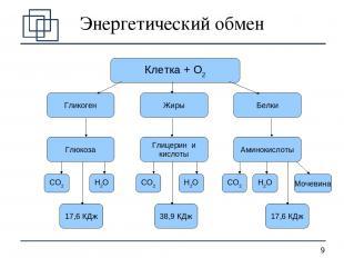 Энергетический обмен Клетка + О2 Гликоген Жиры Белки Глюкоза Глицерин и кислоты