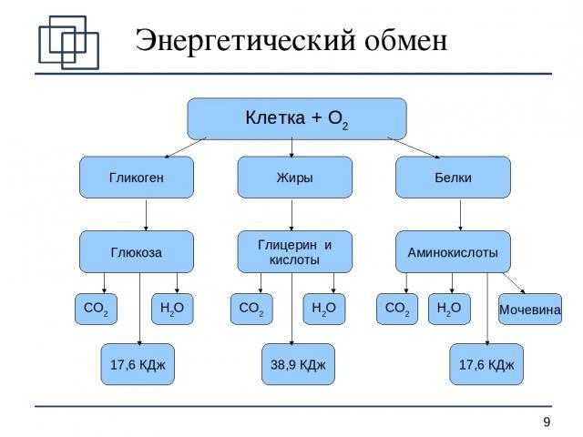 Энергетический обмен Клетка + О2 Гликоген Жиры Белки Глюкоза Глицерин и кислоты Аминокислоты СО2 Н2О СО2 Н2О СО2 Н2О Мочевина 17,6 КДж 38,9 КДж 17,6 КДж *