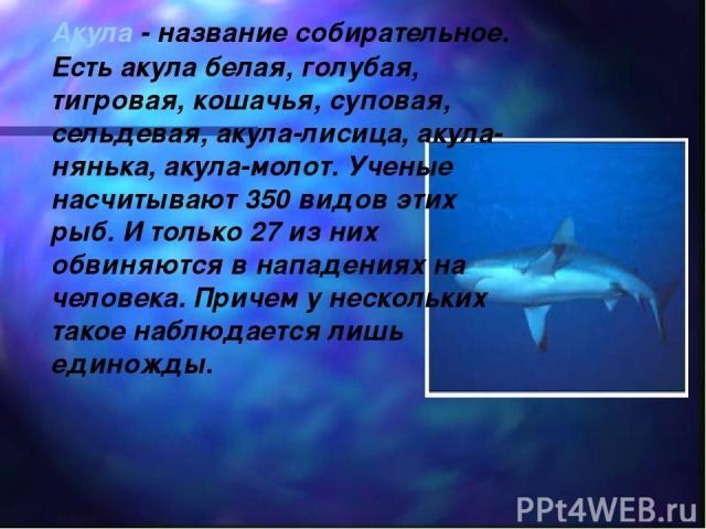 Акула - название собирательное. Есть акула белая, голубая, тигровая, кошачья, суповая, сельдевая, акула-лисица, акула-нянька, акула-молот. Ученые насчитывают 350 видов этих рыб. И только 27 из них обвиняются в нападениях на человека. Причем у нескол…