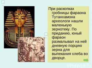 При раскопках гробницы фараона Тутанхамона археологи нашли маленькую зернотеку.