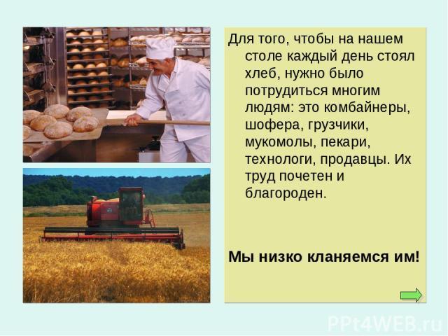 Для того, чтобы на нашем столе каждый день стоял хлеб, нужно было потрудиться многим людям: это комбайнеры, шофера, грузчики, мукомолы, пекари, технологи, продавцы. Их труд почетен и благороден. Мы низко кланяемся им!