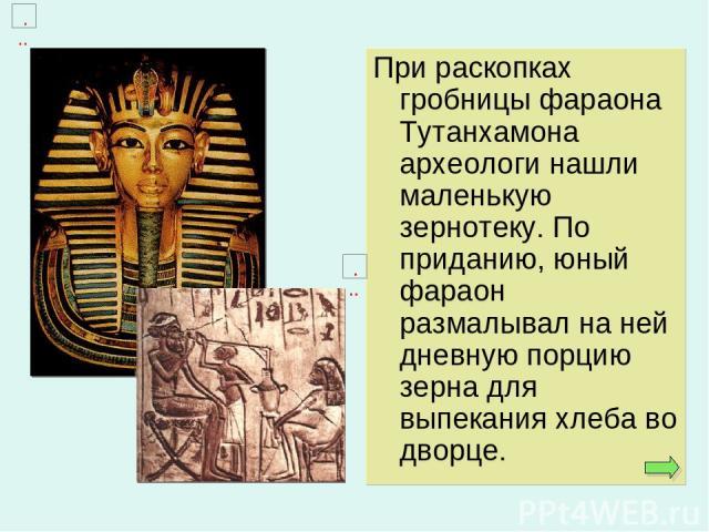 При раскопках гробницы фараона Тутанхамона археологи нашли маленькую зернотеку. По приданию, юный фараон размалывал на ней дневную порцию зерна для выпекания хлеба во дворце.