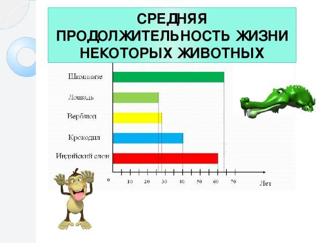СРЕДНЯЯ ПРОДОЛЖИТЕЛЬНОСТЬ ЖИЗНИ НЕКОТОРЫХ ЖИВОТНЫХ Какое животное живет дольше других? Сколько лет живет крокодил? Какое животное живет 60 лет?