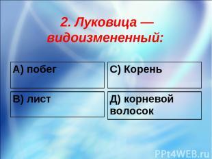 2. Луковица — видоизмененный: А) побег С) Корень В) лист Д) корневой волосок