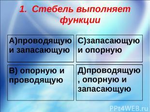 Стебель выполняет функции А)проводящую и запасающую С)запасающую и опорную В) оп