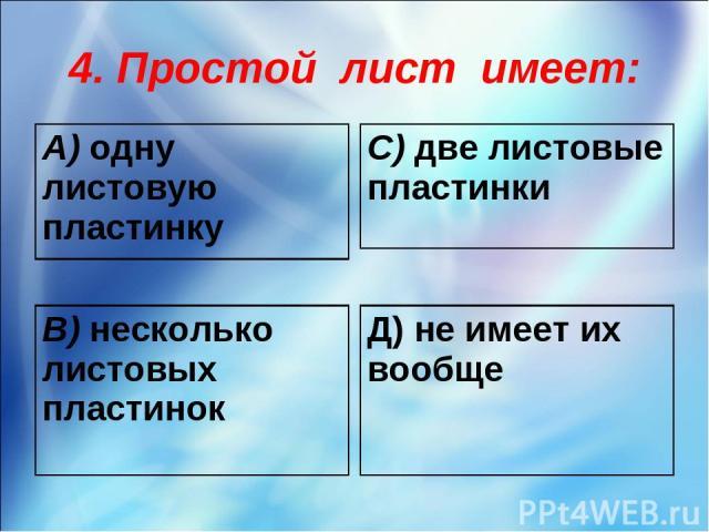 4. Простой лист имеет: А) одну листовую пластинку С) две листовые пластинки В) несколько листовых пластинок Д) не имеет их вообще