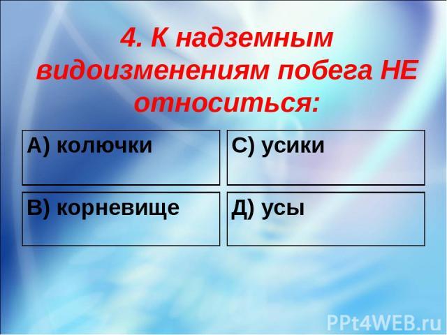 4. К надземным видоизменениям побега НЕ относиться: А) колючки С) усики В) корневище Д) усы