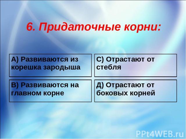 6. Придаточные корни: A) Развиваются из корешка зародыша С) Отрастают от стебля B) Развиваются на главном корне Д) Отрастают от боковых корней