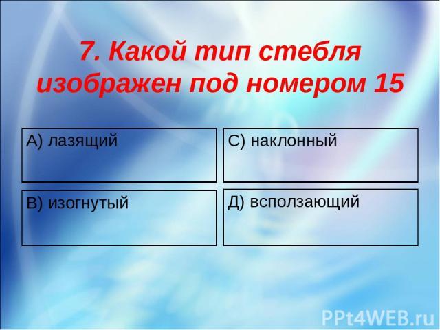 7. Какой тип стебля изображен под номером 15 А) лазящий С) наклонный В) изогнутый Д) всползающий