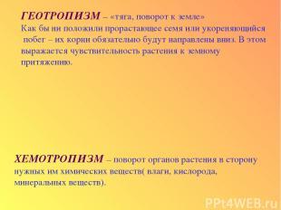ГЕОТРОПИЗМ – «тяга, поворот к земле» Как бы ни положили прорастающее семя или ук
