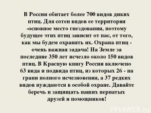 В России обитает более 700 видов диких птиц. Для сотен видов ее территория -осно