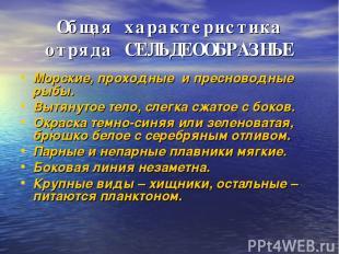 Общая характеристика отряда СЕЛЬДЕООБРАЗНЫЕ Морские, проходные и пресноводные ры