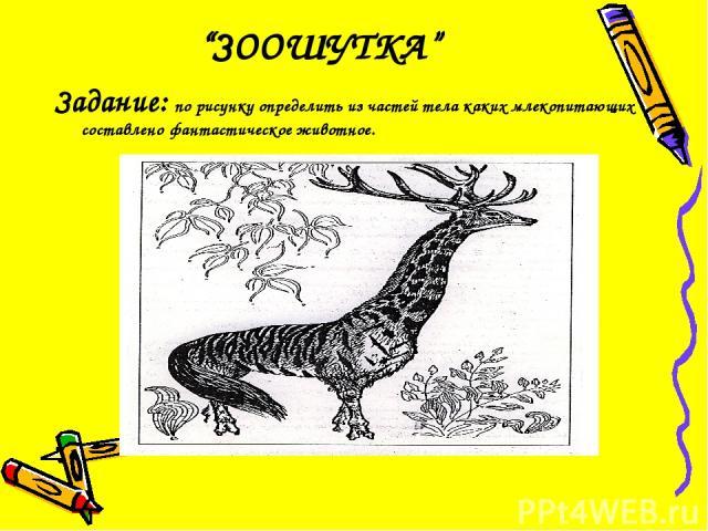 """""""ЗООШУТКА"""" Задание: по рисунку определить из частей тела каких млекопитающих составлено фантастическое животное."""