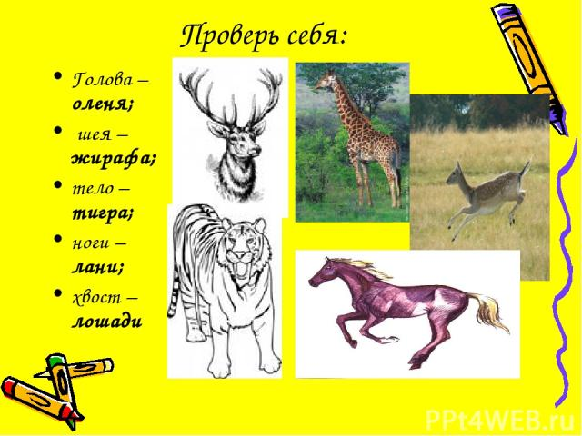 Проверь себя: Голова – оленя; шея – жирафа; тело – тигра; ноги – лани; хвост – лошади
